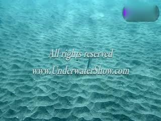 超美小萝莉海底全裸大秀