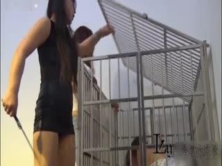 暴力虐待小三關在鐵籠子里