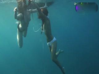 深海双花裸泳展优美身姿